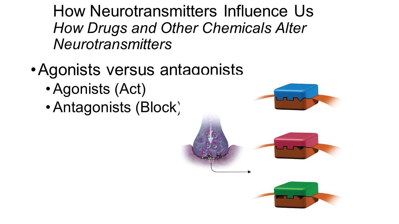 Agonists versus antagonists