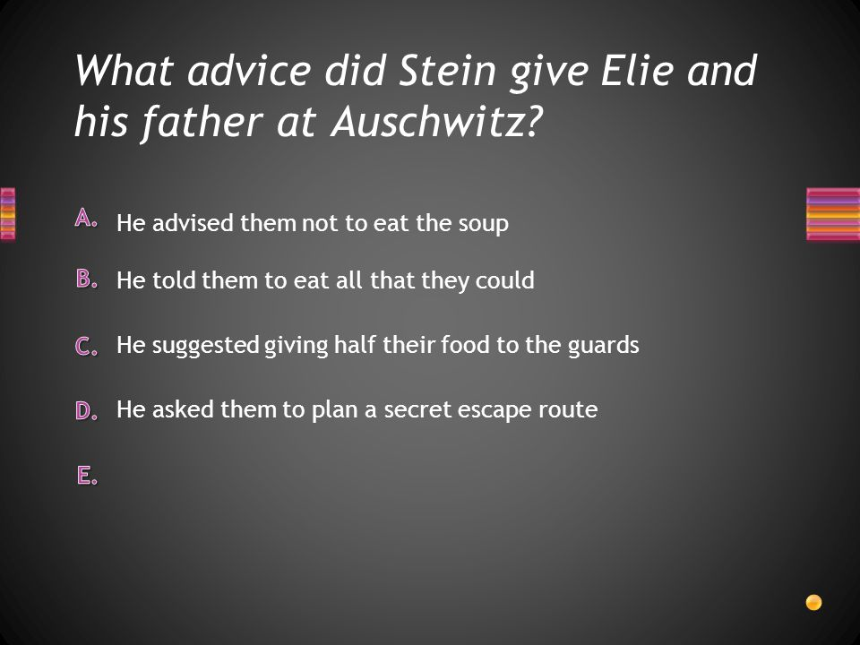 What advice did Stein give Elie and his father at Auschwitz