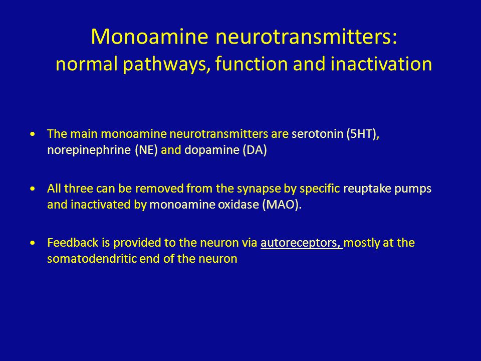 Monoamine neurotransmitters: normal pathways, function and inactivation