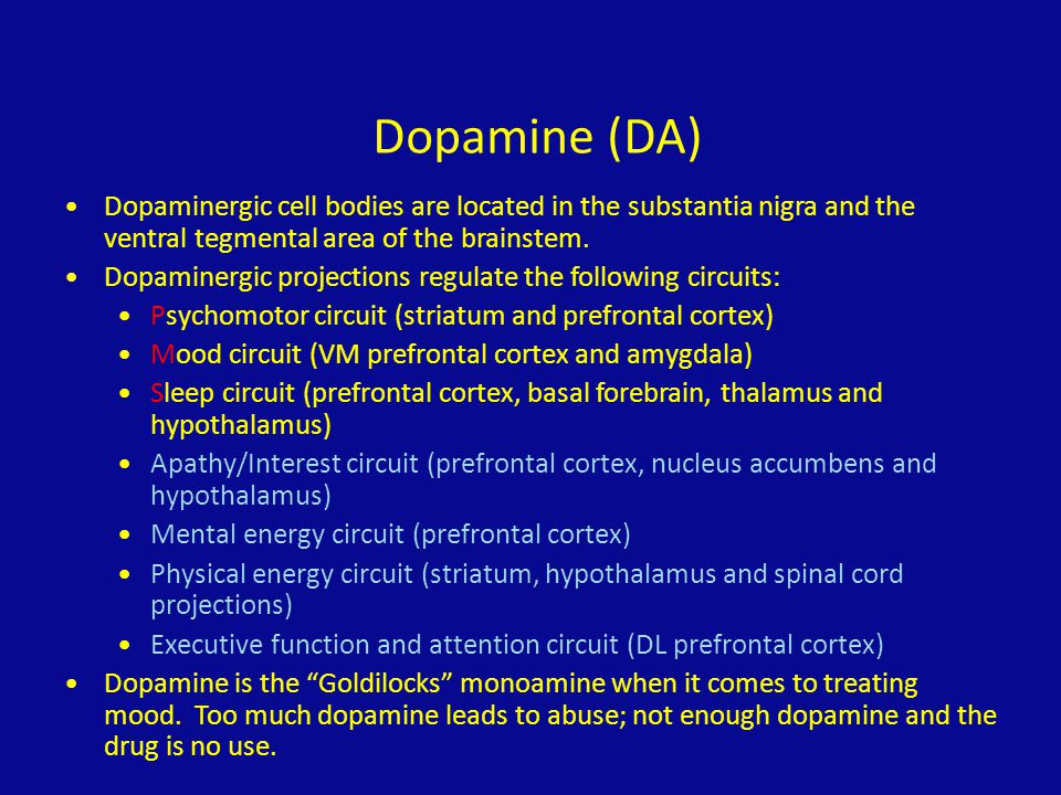 Dopamine (DA) Dopaminergic cell bodies are located in the substantia nigra and the ventral tegmental area of the brainstem.