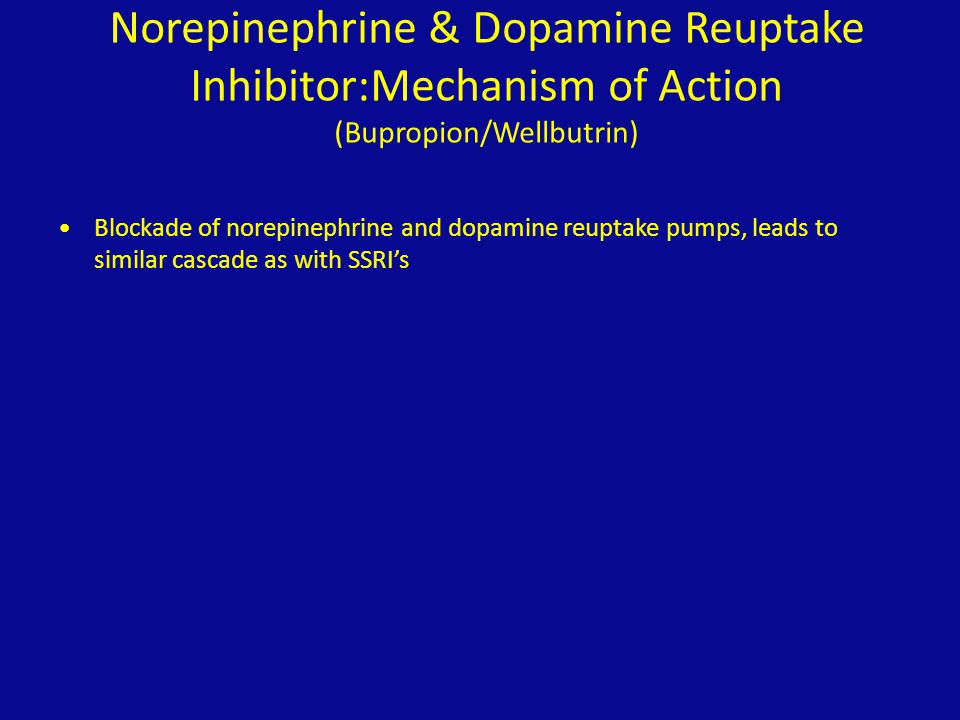 Norepinephrine & Dopamine Reuptake Inhibitor:Mechanism of Action (Bupropion/Wellbutrin)