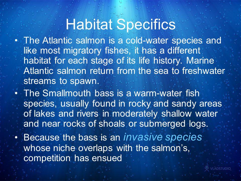 Habitat Specifics