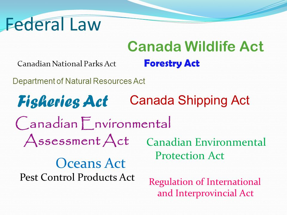 Federal Law Fisheries Act Canada Wildlife Act