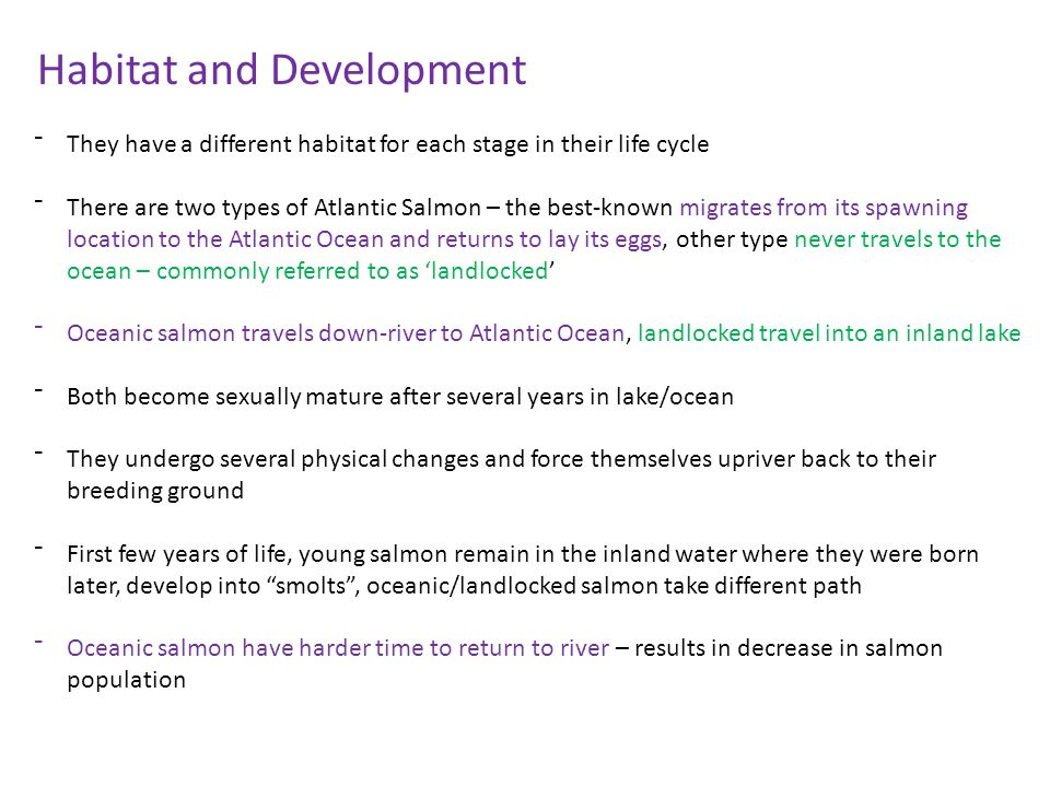 Habitat and Development
