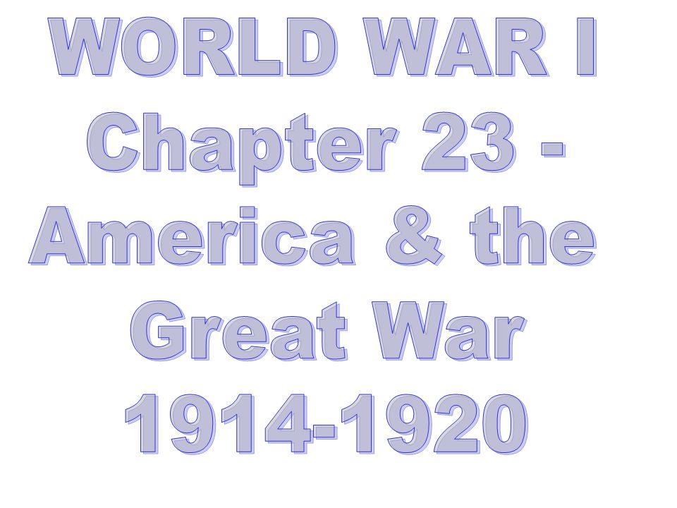 WORLD WAR I Chapter 23 - America & the Great War 1914-1920