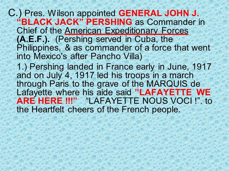 C. ) Pres. Wilson appointed GENERAL JOHN J
