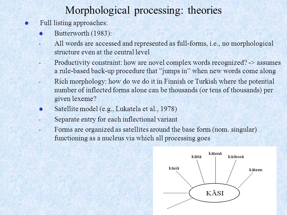 Morphological processing: theories