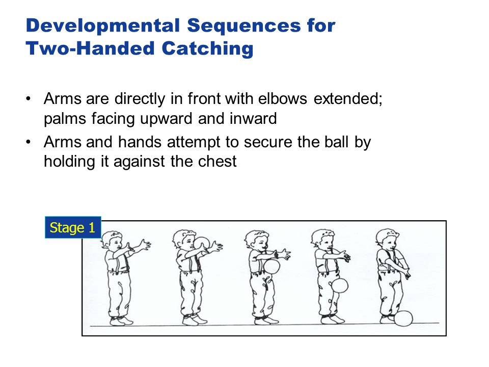 Developmental Sequences for Two-Handed Catching