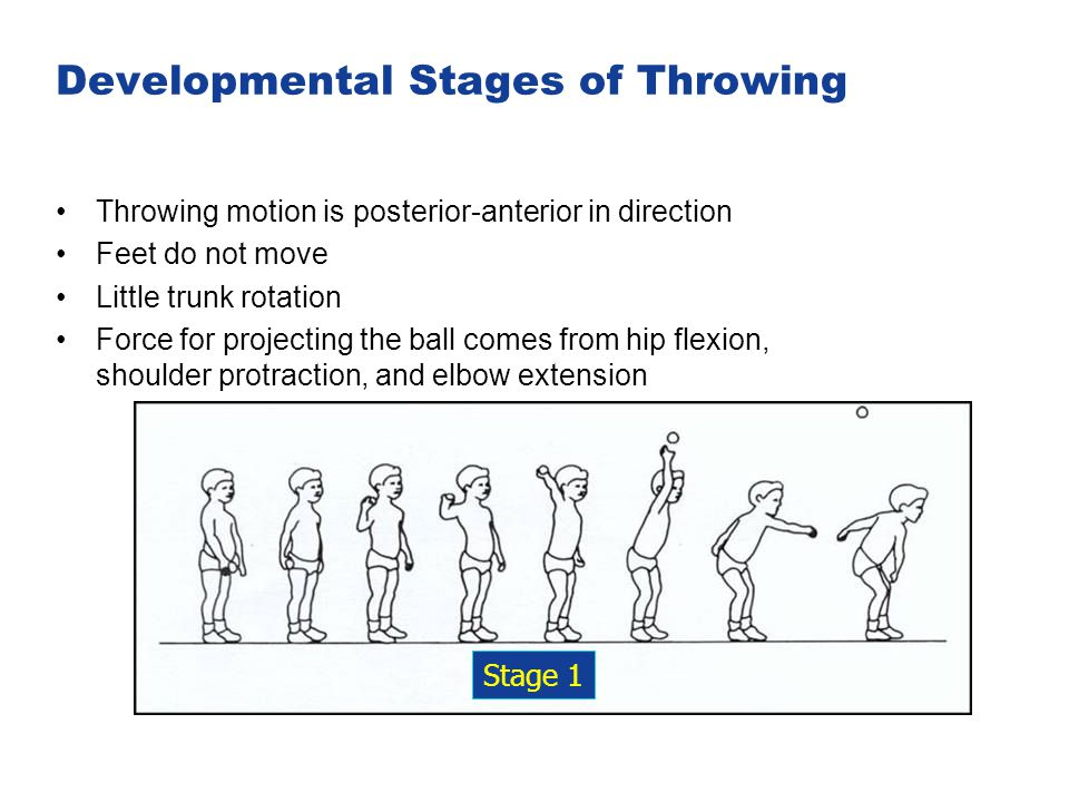 Developmental Stages of Throwing