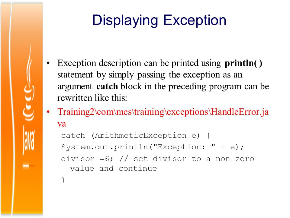 Displaying Exception