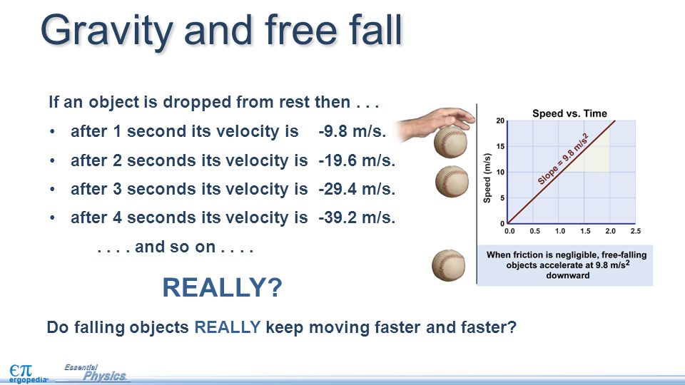 Gravity and free fall REALLY