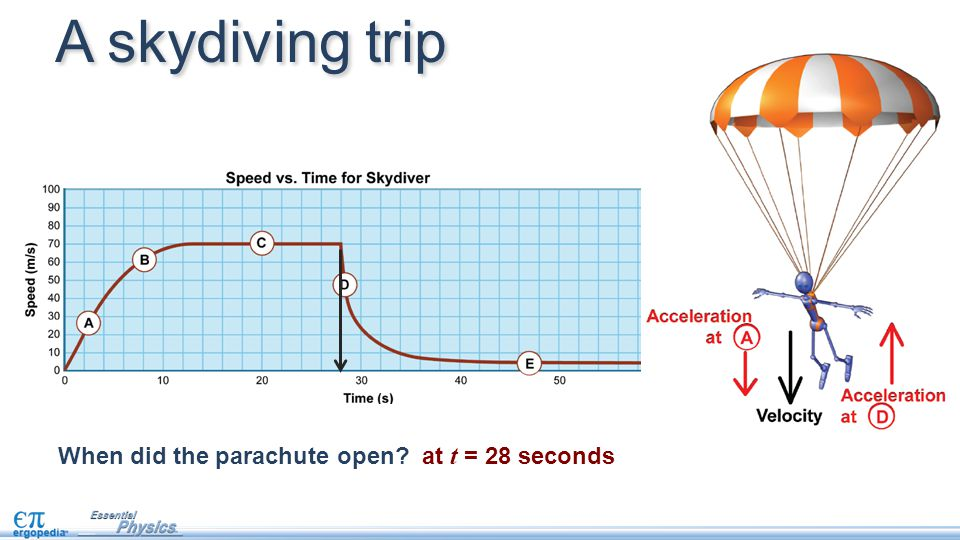 A skydiving trip When did the parachute open at t = 28 seconds