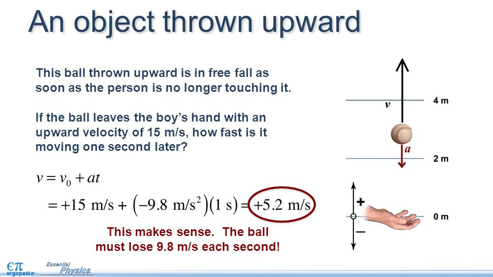 This makes sense. The ball must lose 9.8 m/s each second!
