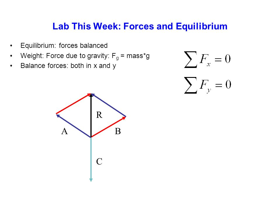Lab This Week: Forces and Equilibrium