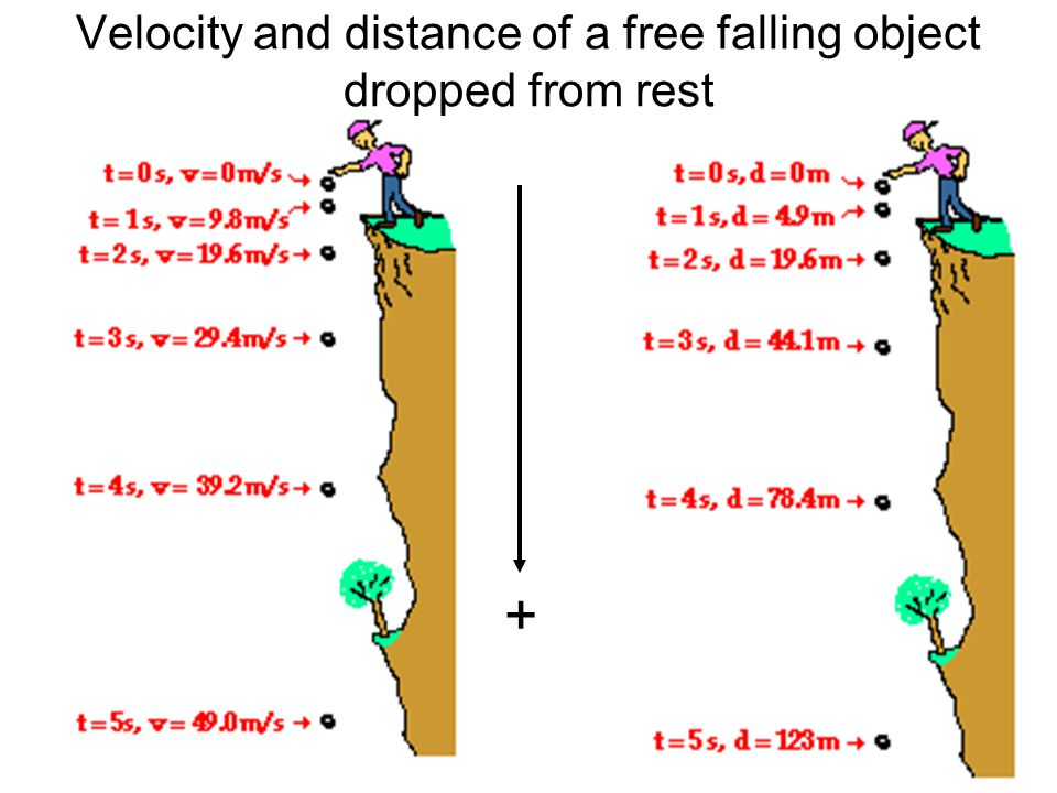 Velocity and distance of a free falling object dropped from rest