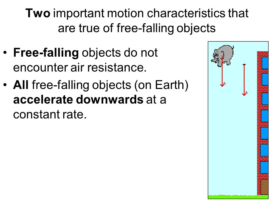 Two important motion characteristics that are true of free-falling objects