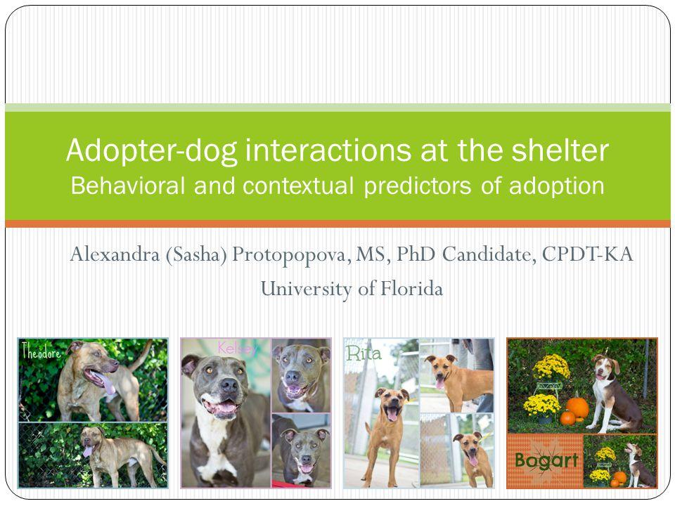 Alexandra (Sasha) Protopopova, MS, PhD Candidate, CPDT-KA