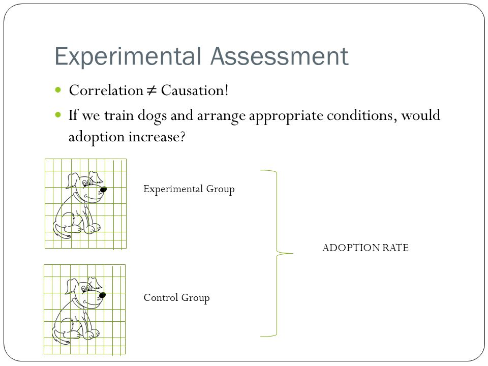 Experimental Assessment