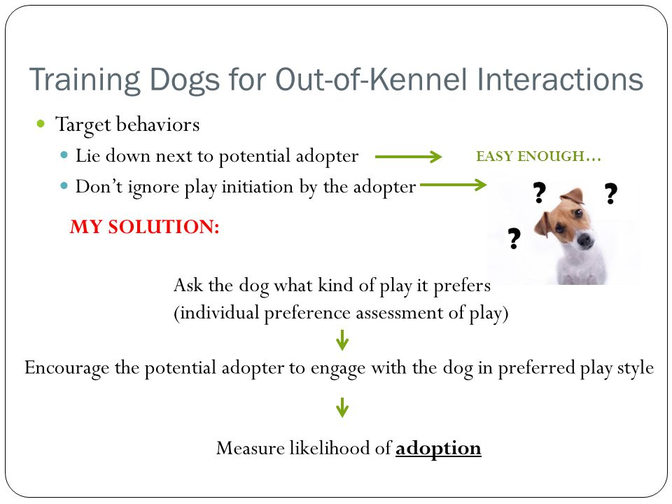 Training Dogs for Out-of-Kennel Interactions