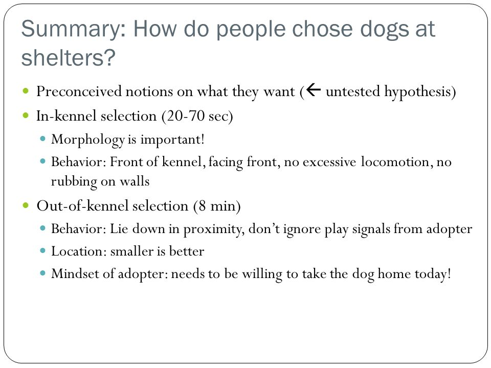 Summary: How do people chose dogs at shelters