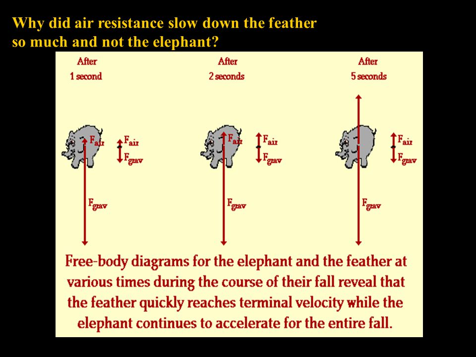 Why did air resistance slow down the feather so much and not the elephant
