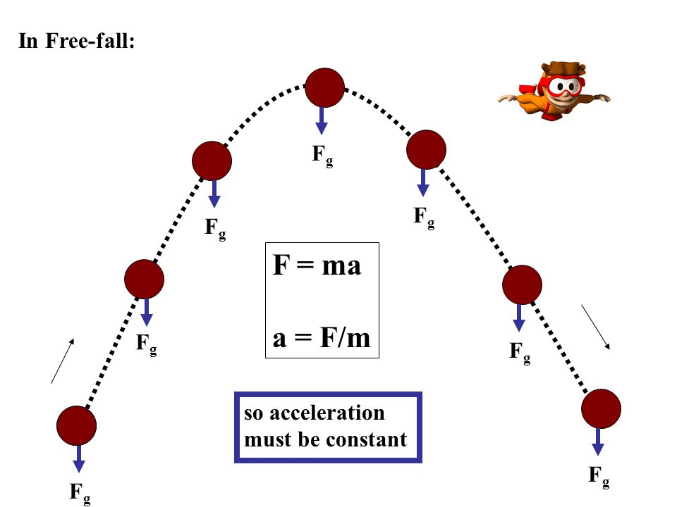 F = ma a = F/m In Free-fall: Fg Fg Fg Fg Fg so acceleration