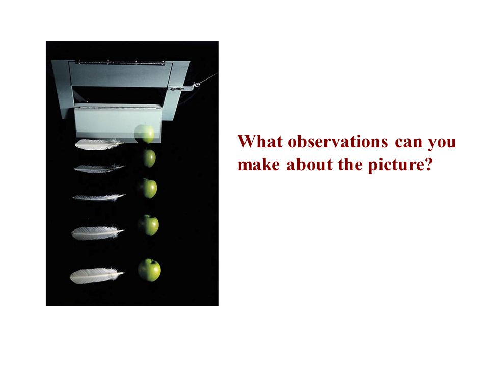 What observations can you