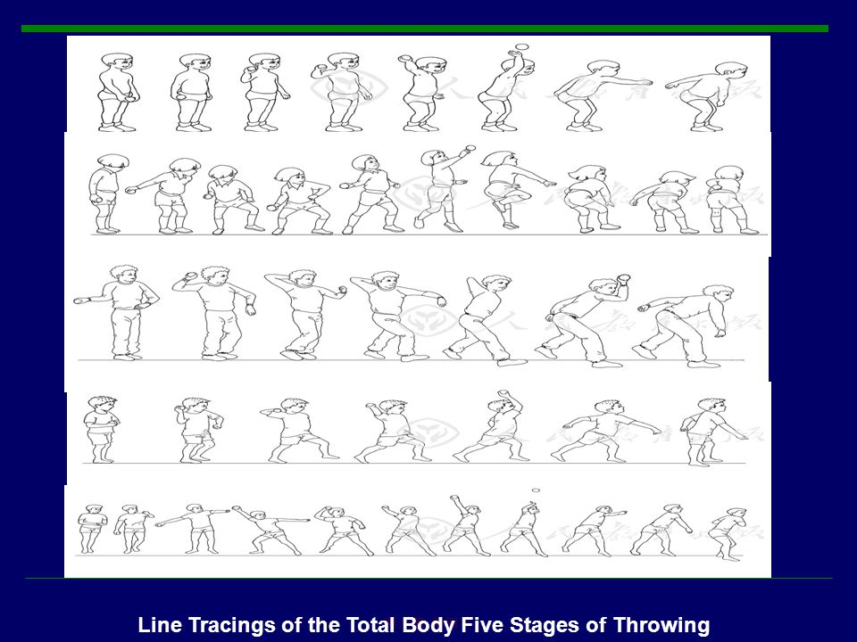 Line Tracings of the Total Body Five Stages of Throwing