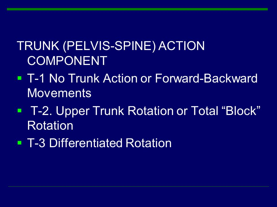TRUNK (PELVIS-SPINE) ACTION COMPONENT