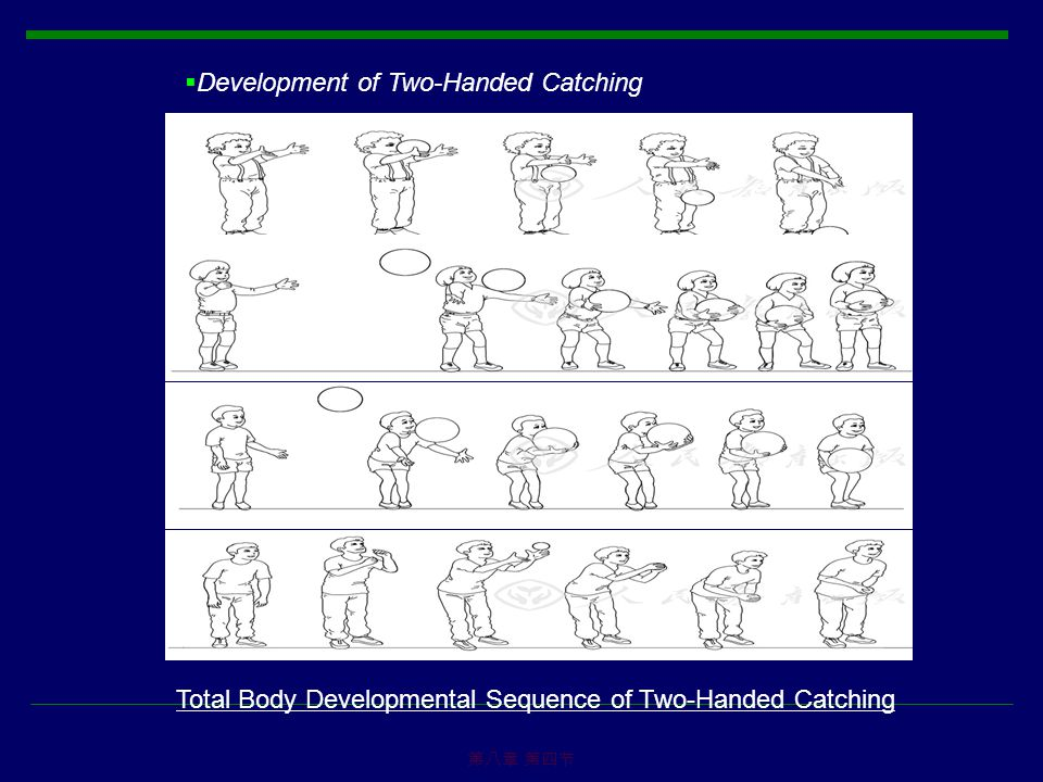 Development of Two-Handed Catching