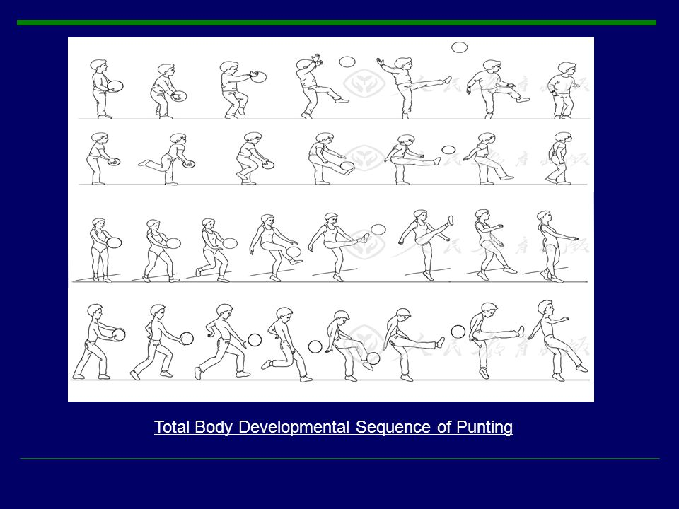 Total Body Developmental Sequence of Punting