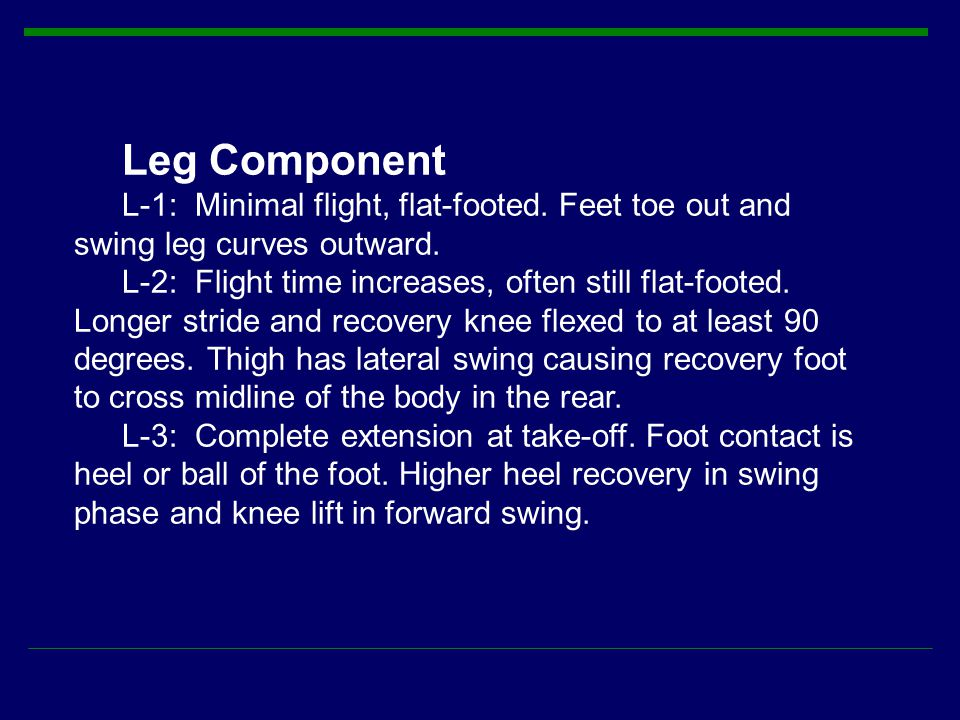 Leg Component L-1: Minimal flight, flat-footed. Feet toe out and swing leg curves outward.