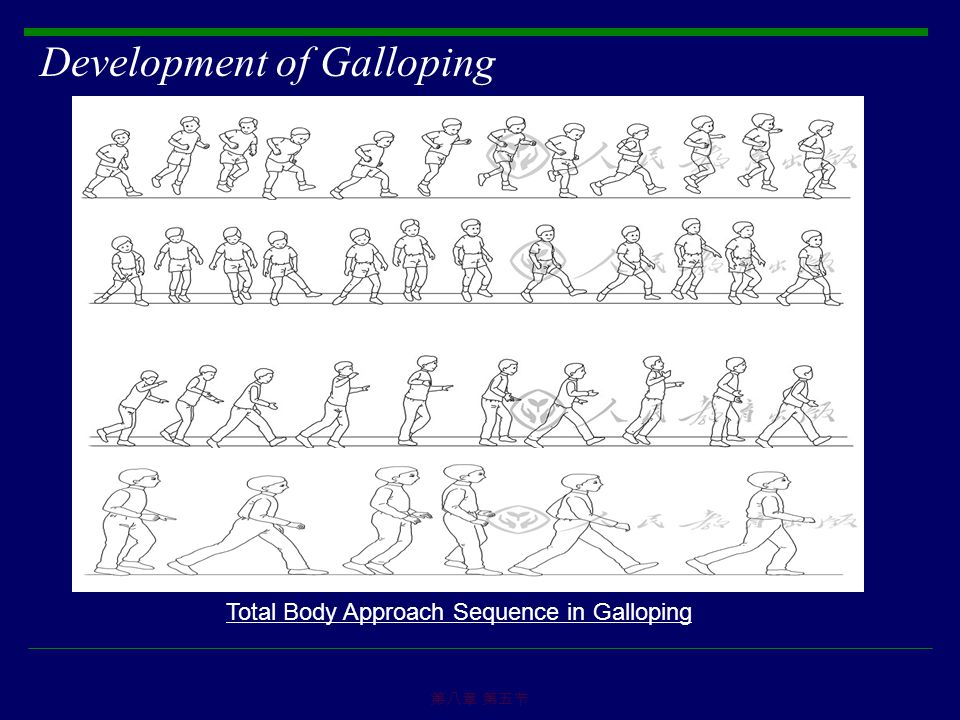 Development of Galloping