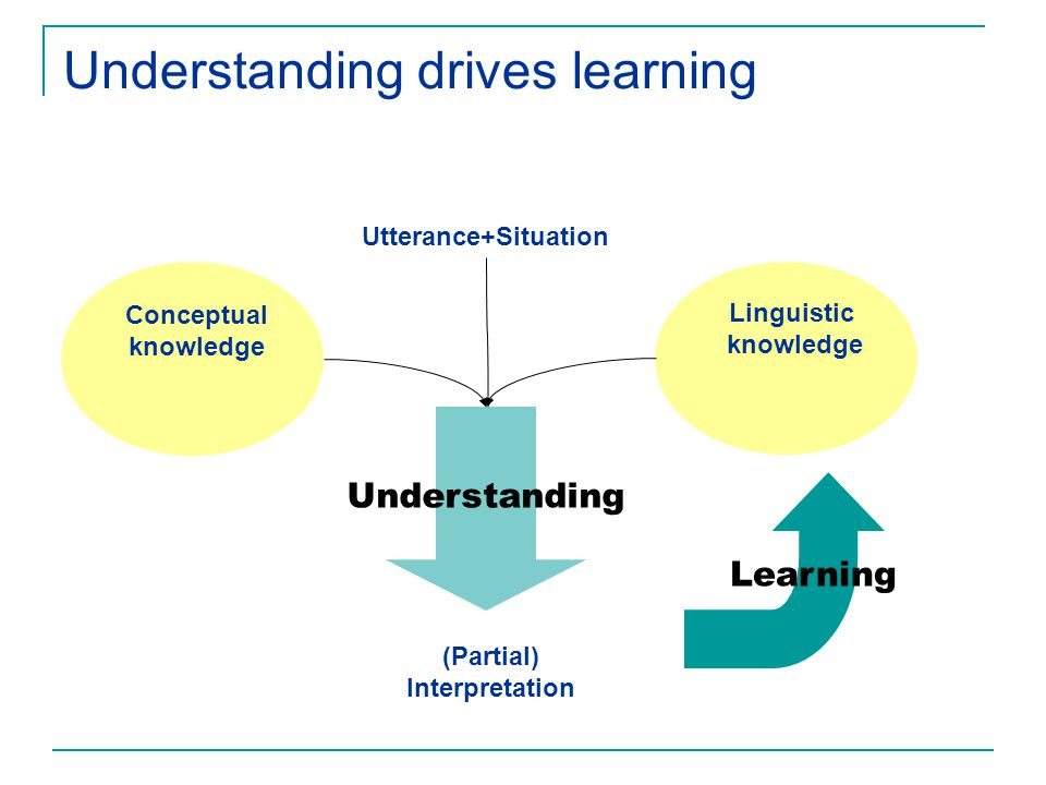 Understanding drives learning