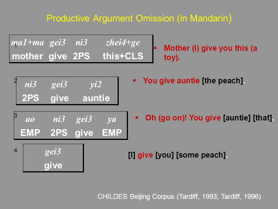 Productive Argument Omission (in Mandarin)
