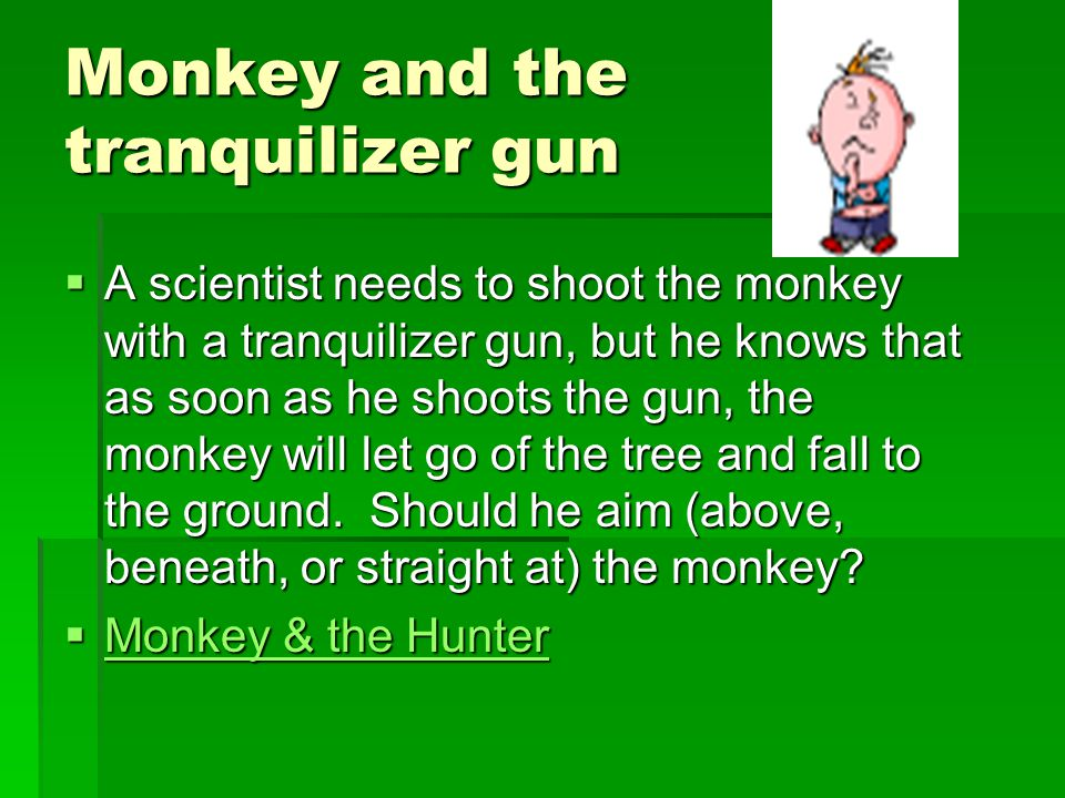 Monkey and the tranquilizer gun