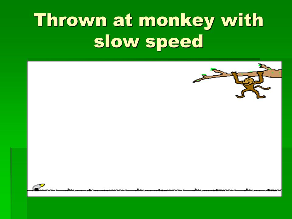Thrown at monkey with slow speed