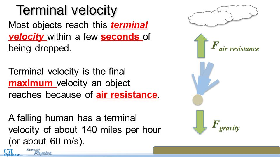 Terminal velocity Most objects reach this terminal velocity within a few seconds of being dropped.