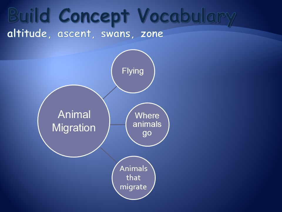 Build Concept Vocabulary altitude, ascent, swans, zone