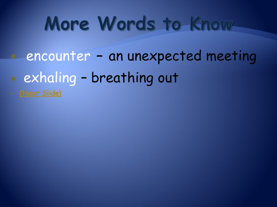 More Words to Know encounter – an unexpected meeting