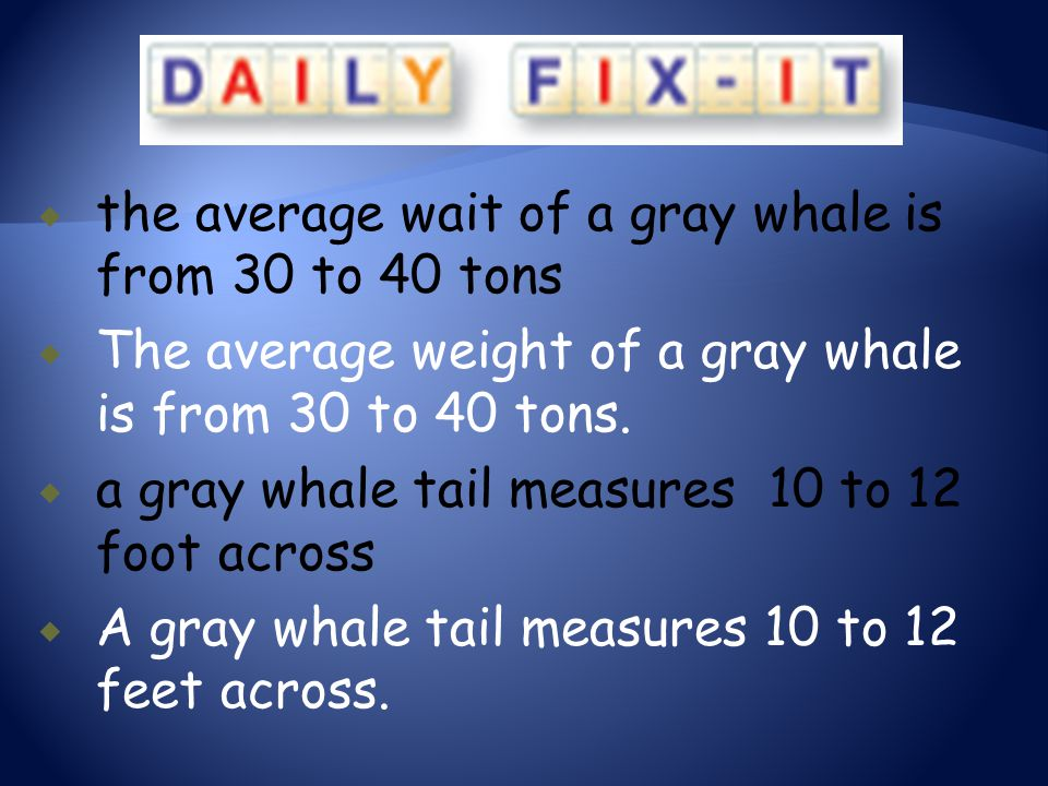 the average wait of a gray whale is from 30 to 40 tons