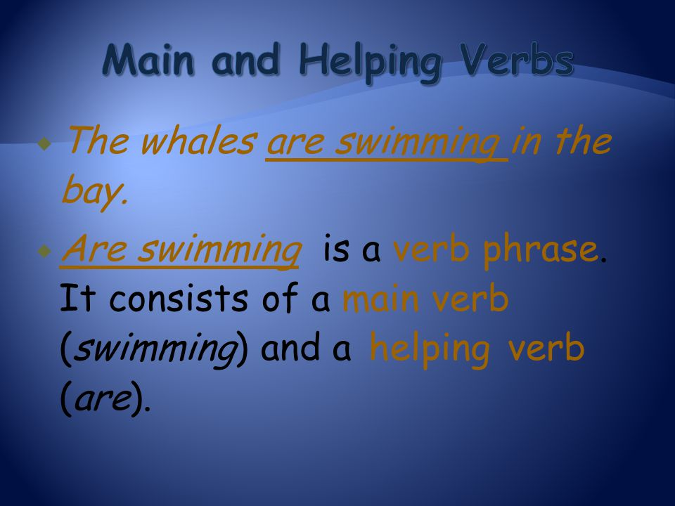 Main and Helping Verbs The whales are swimming in the bay.