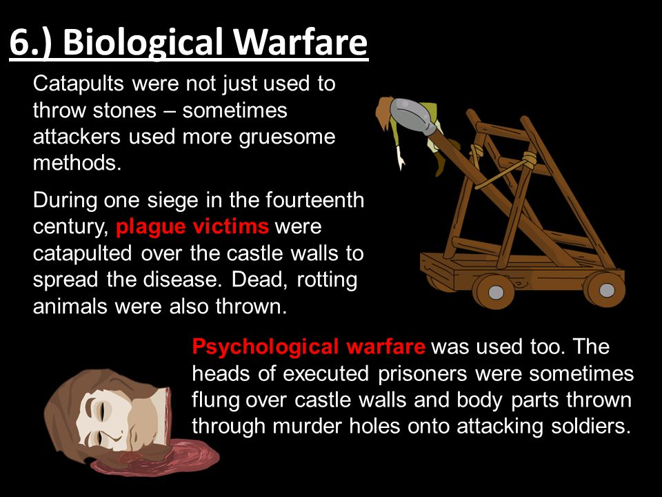 6.) Biological Warfare Catapults were not just used to throw stones – sometimes attackers used more gruesome methods.