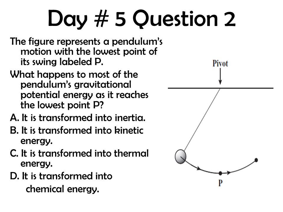Day # 5 Question 2