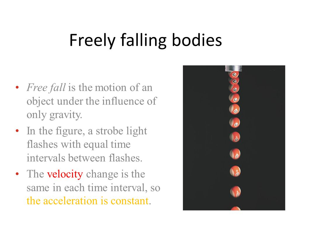 Freely falling bodies Free fall is the motion of an object under the influence of only gravity.