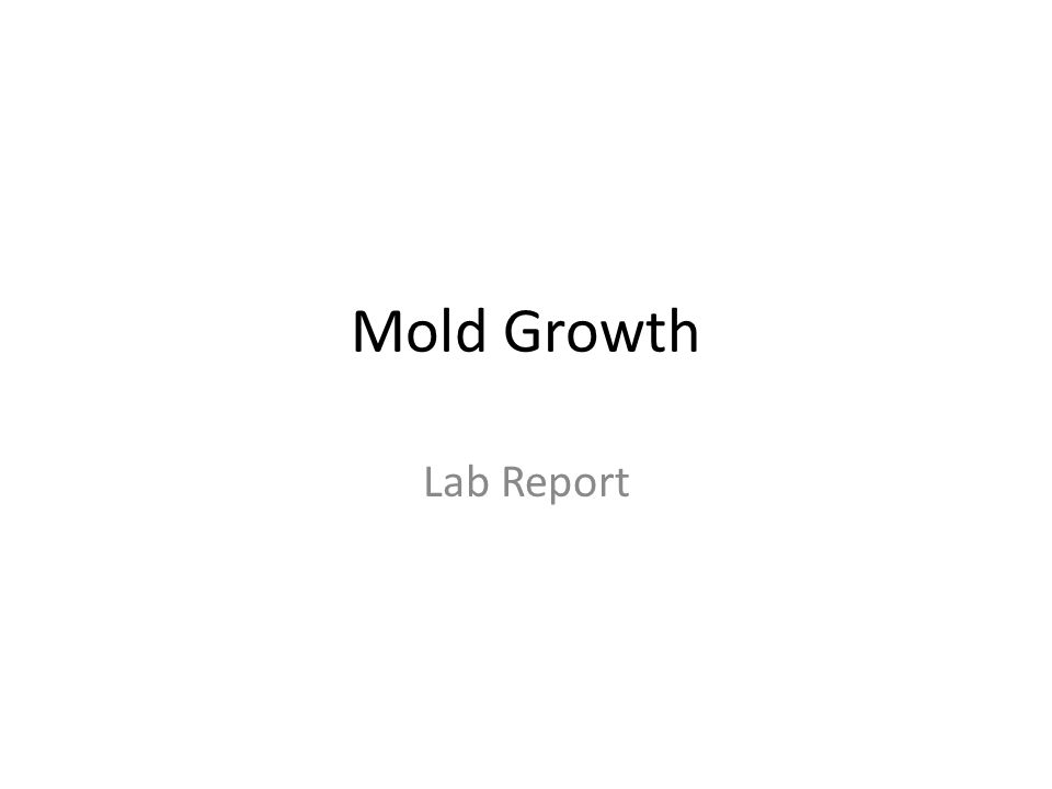 Mold Growth Lab Report