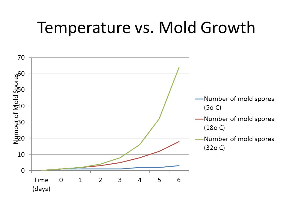 Temperature vs. Mold Growth