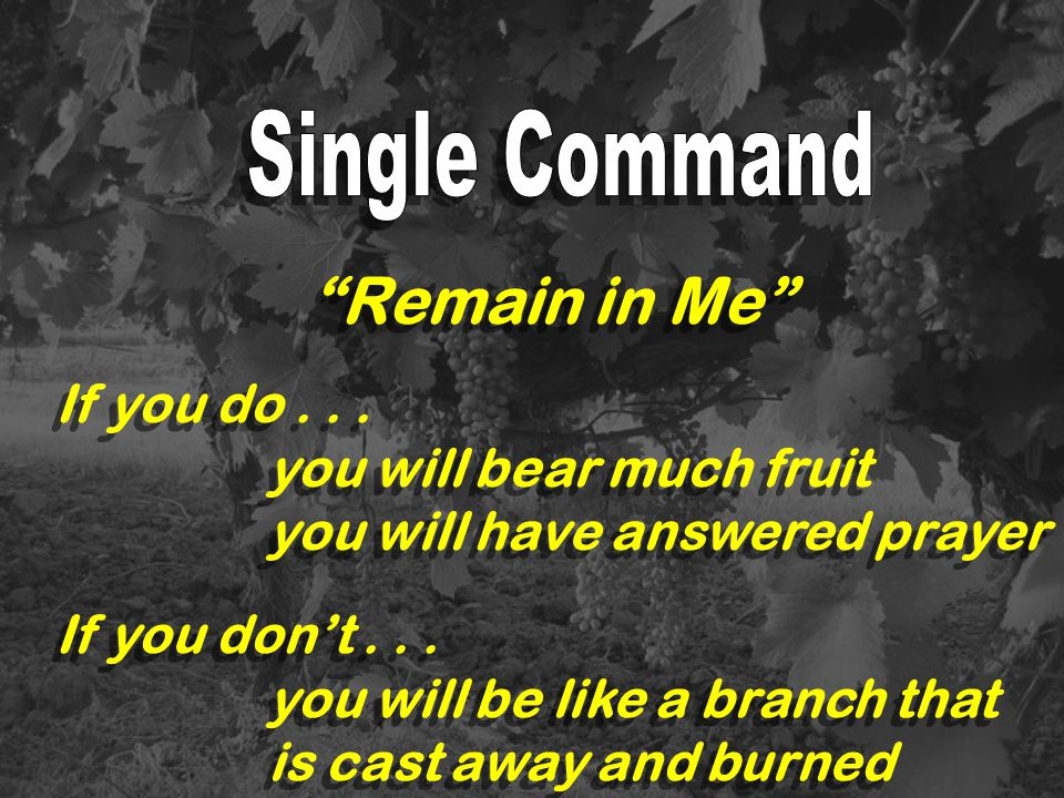 Remain in Me Single Command If you do . . . you will bear much fruit
