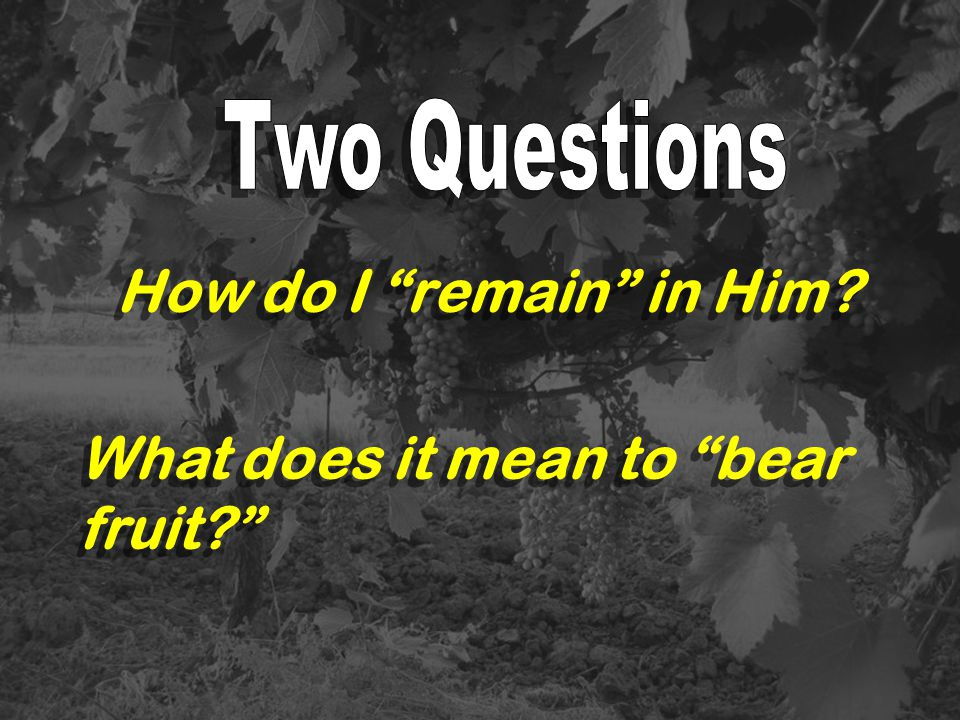 What does it mean to bear fruit