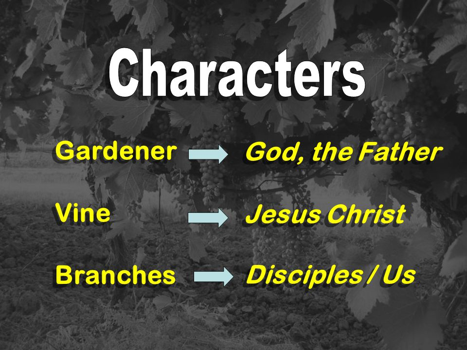 Gardener God, the Father Vine Branches Jesus Christ Disciples / Us